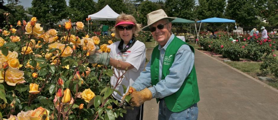 The Friends of the San Jose Rose Garden