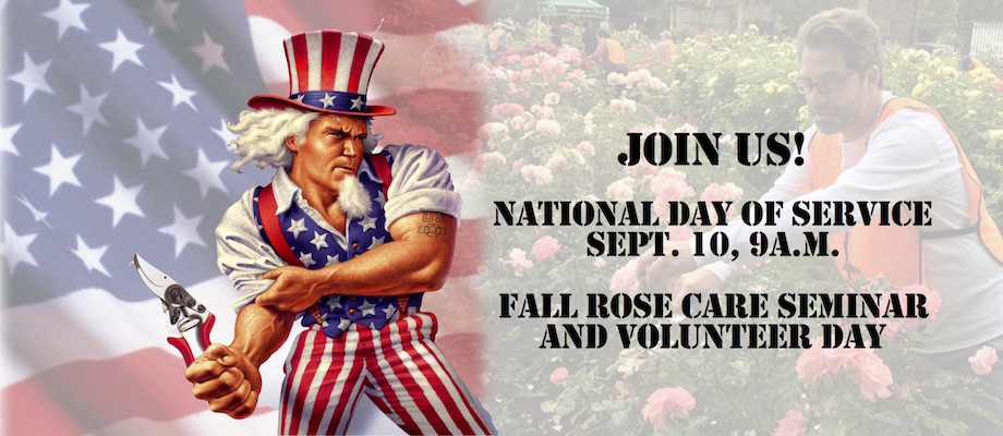 National day of Service WEB Banner 2016 best