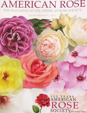 American Rose Magazine Article